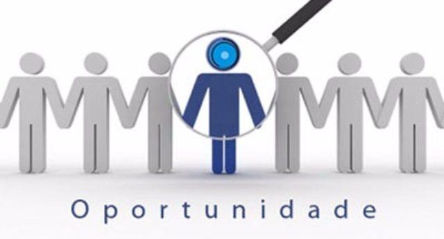 PoloSul contrata consultor em Tecnologia da Informação